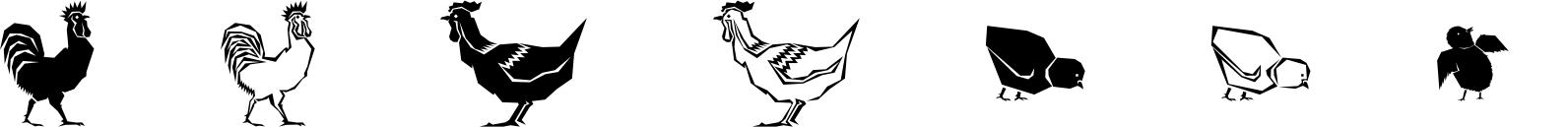 Polytype Birds One