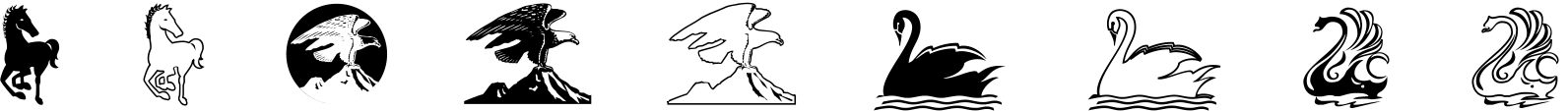 Polytype Images Three