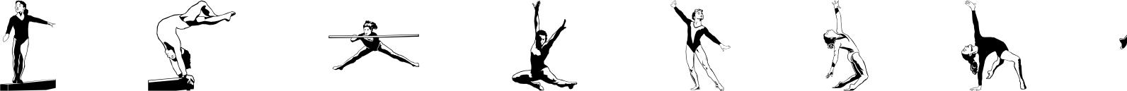 Polytype Sports IV