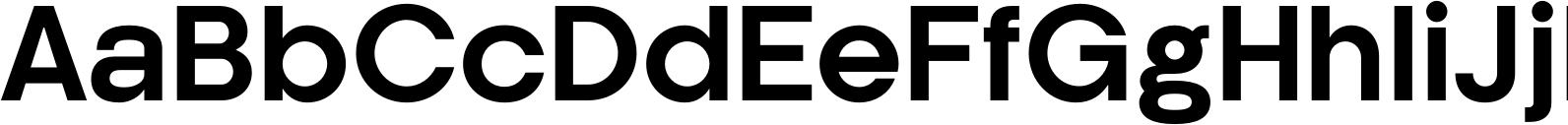 Kamerik 205