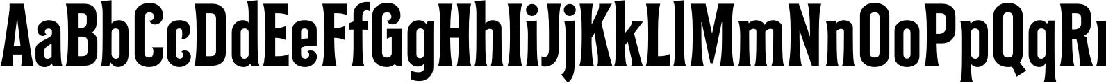 Bilcase