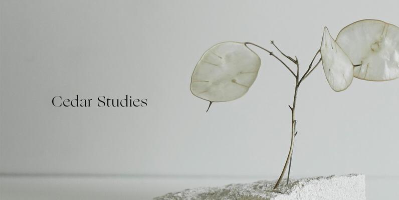 Cedar Studies