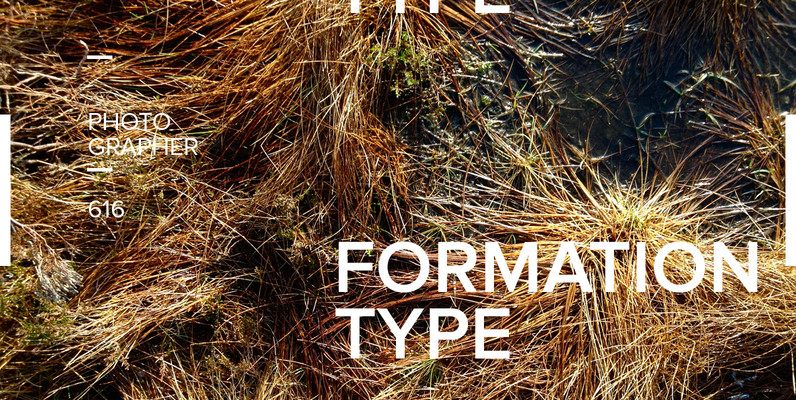 FormationType