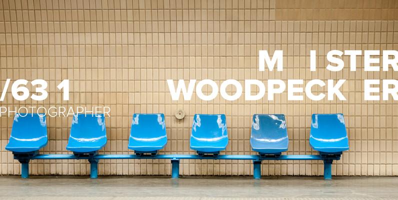 misterwoodpecker