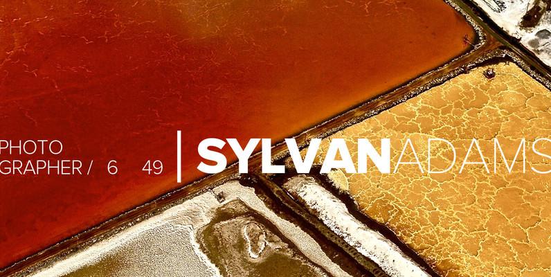 Sylvan Adams