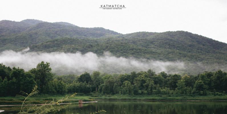 Katmatcha