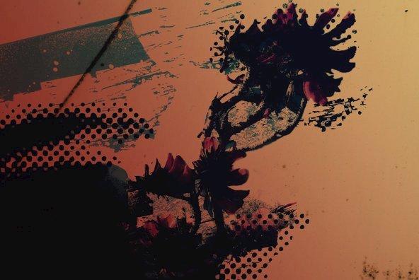 Reverie 01