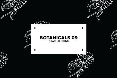 Botanicals 09