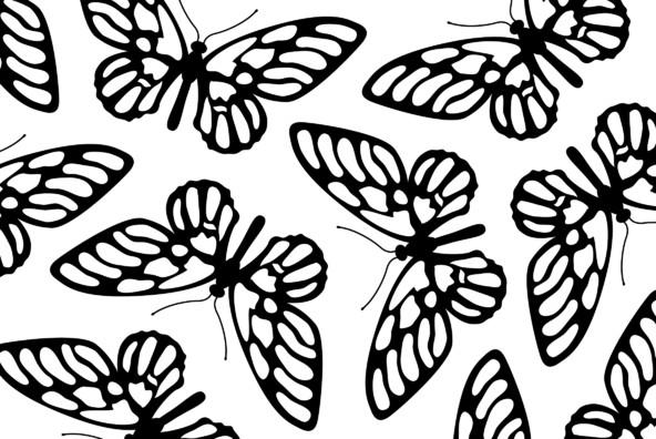 Bugs 04