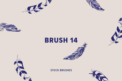 Brush 14