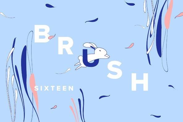 Brush 16