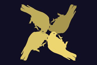 Birds 05