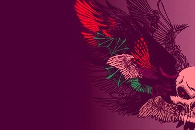 Wings 02