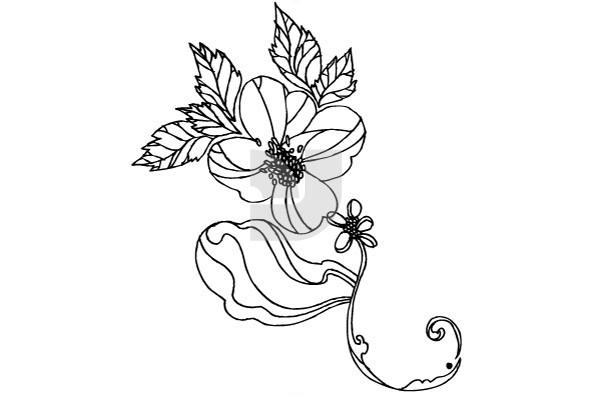 Botanicals 17