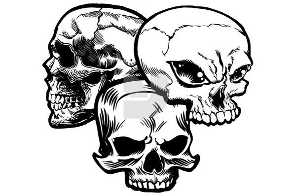 Skullz 09