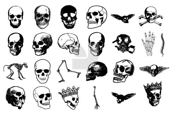 Skullz 11