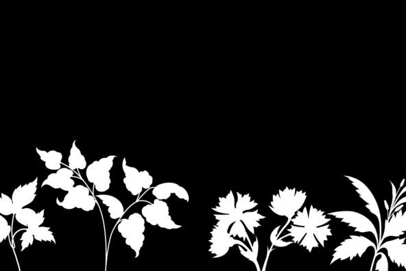 Botanicals 20