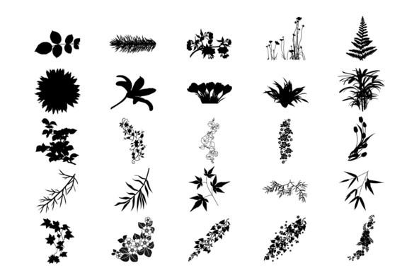 Botanicals 21