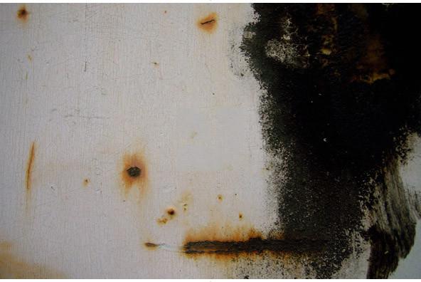 Rust 02