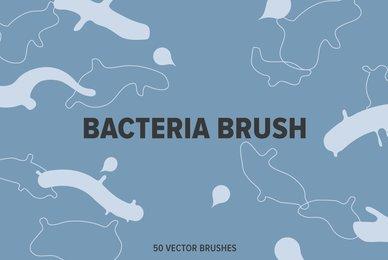 Bacteria Brush