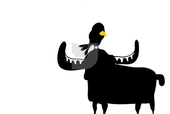 Animals 05