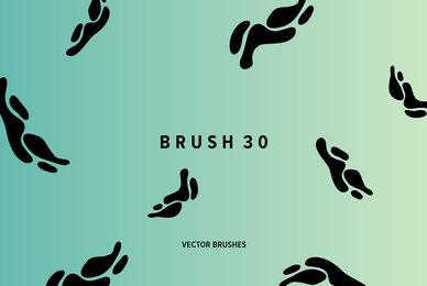 Brush 30