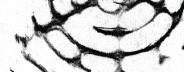 Graphite 06