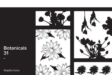 Botanicals 31