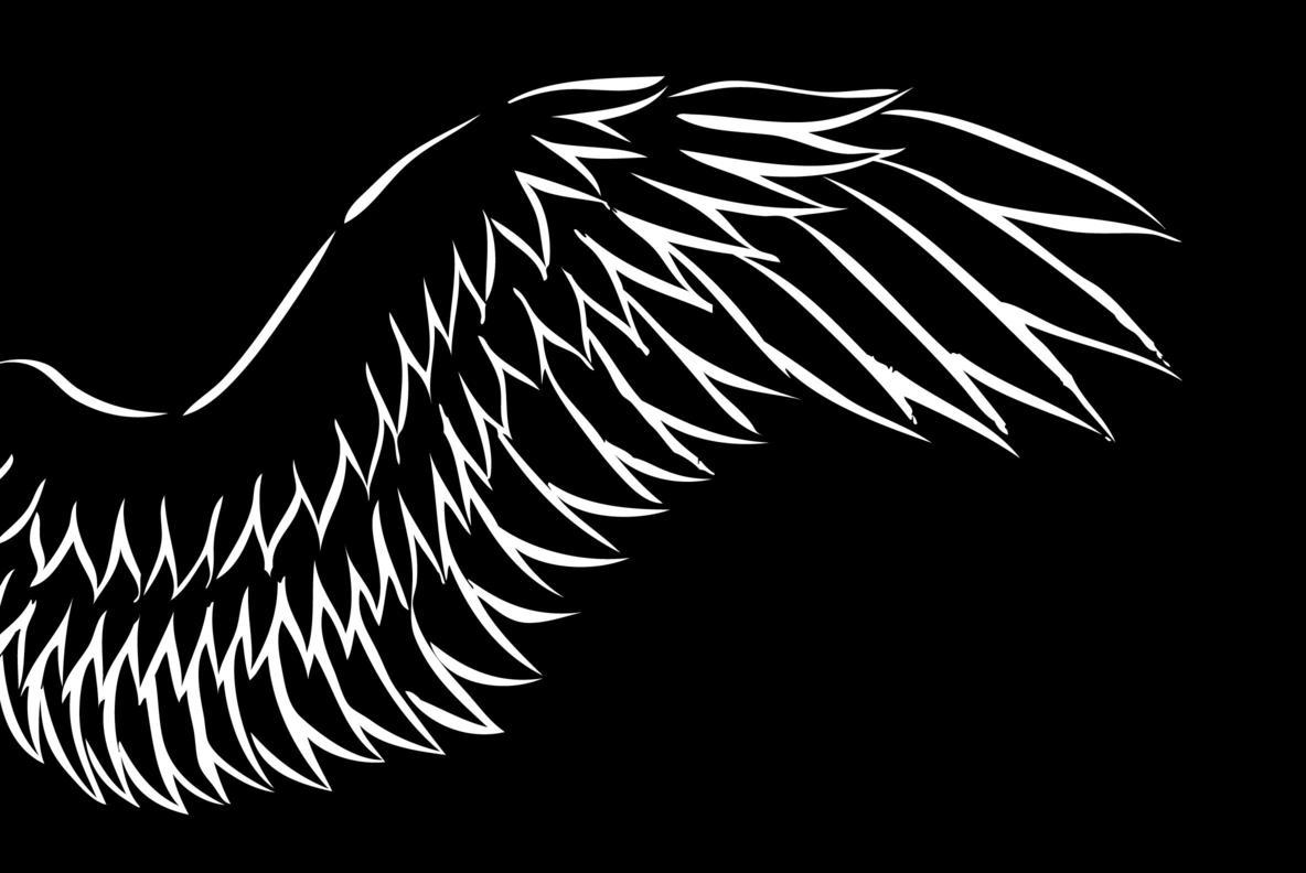 Wings 06