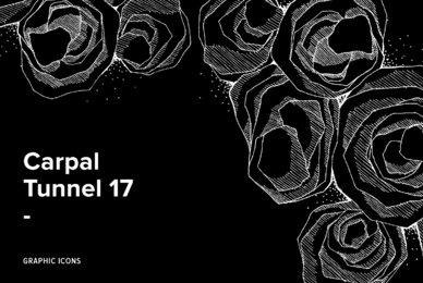 Carpal Tunnel 17