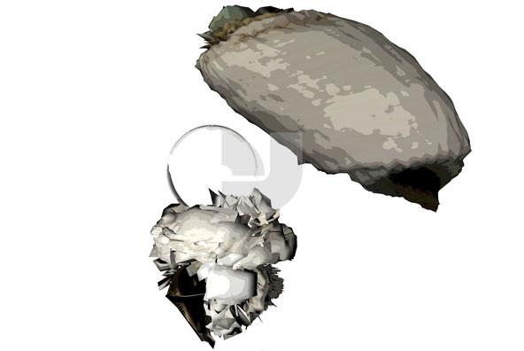 Carboniz