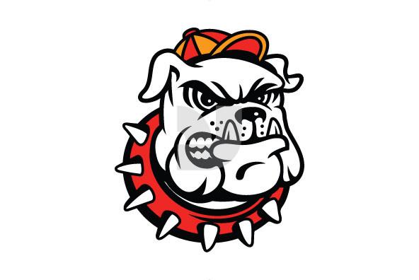 Varsity Mascots