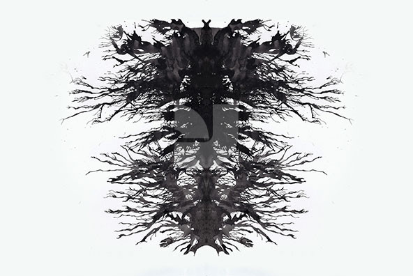 Ink Blot Tests   Rorschach
