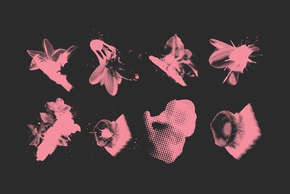 50 Halftone Botanicals