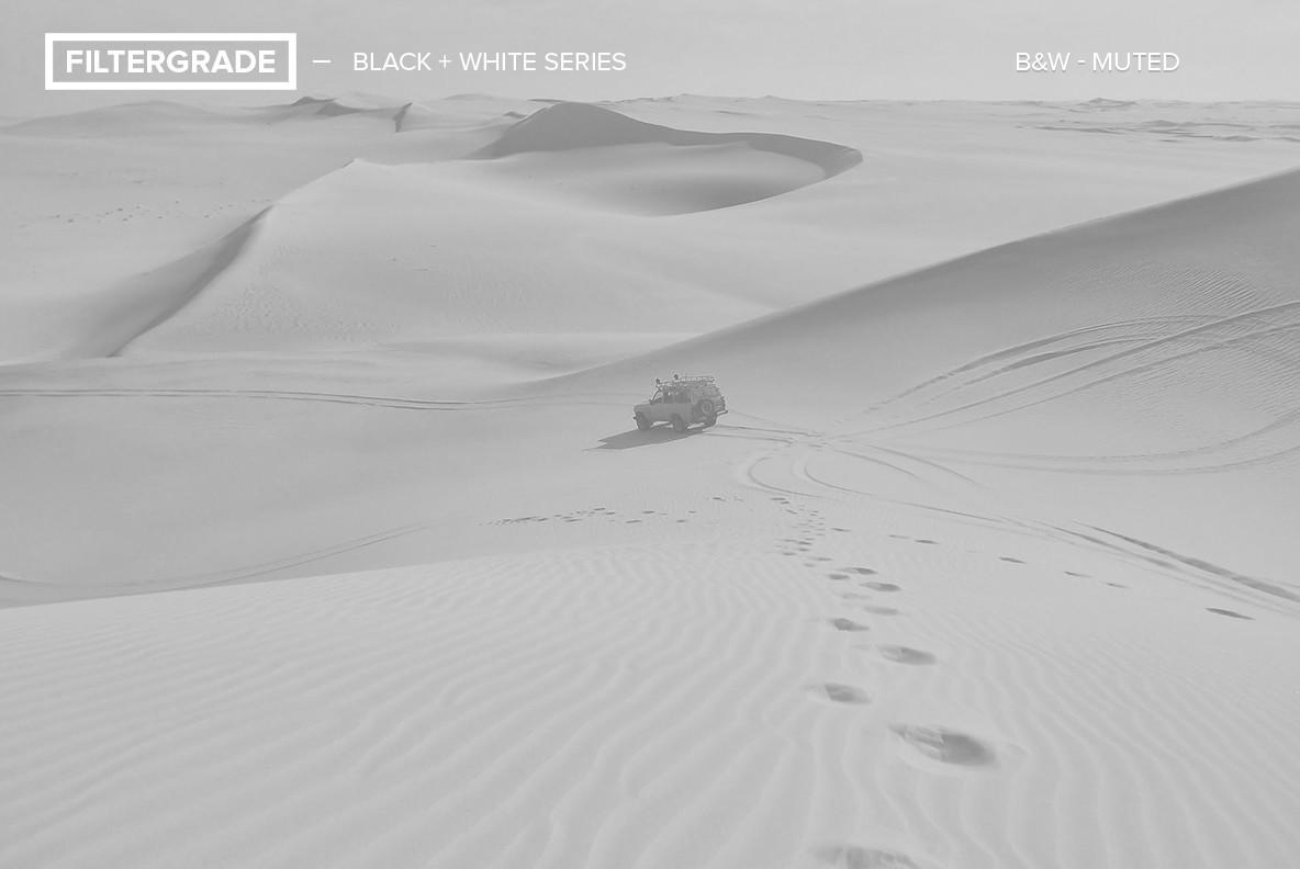 Black   White Series Photoshop Actions