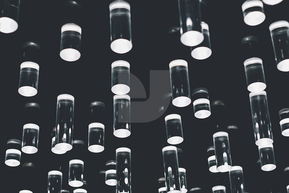 Bulbs   Lights