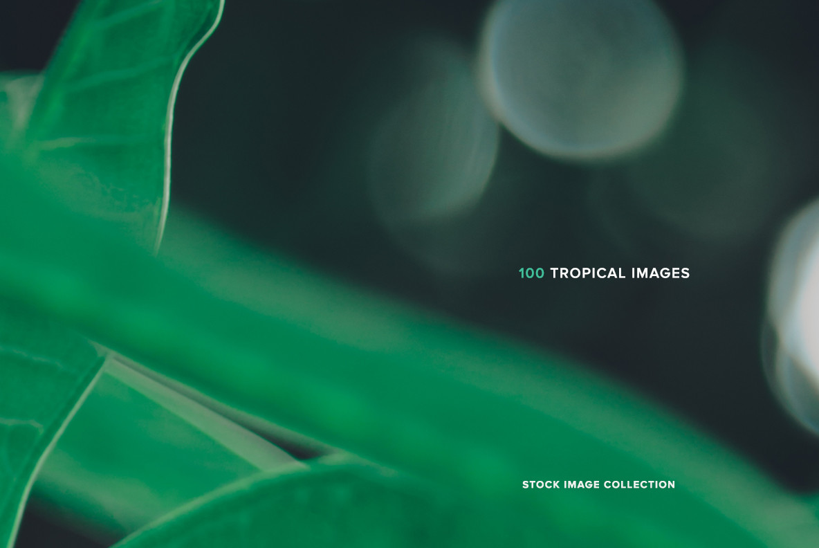 100 Tropical Images