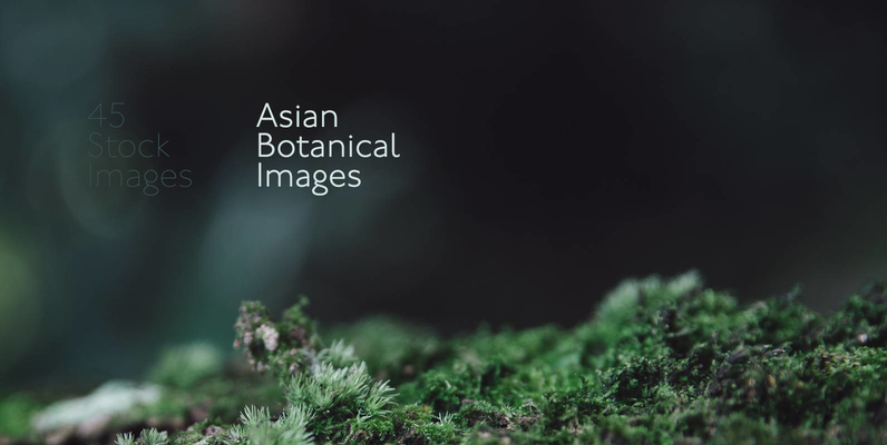 Asian Botanical Images