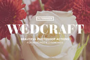 Wedcraft Wedding Photoshop Actions