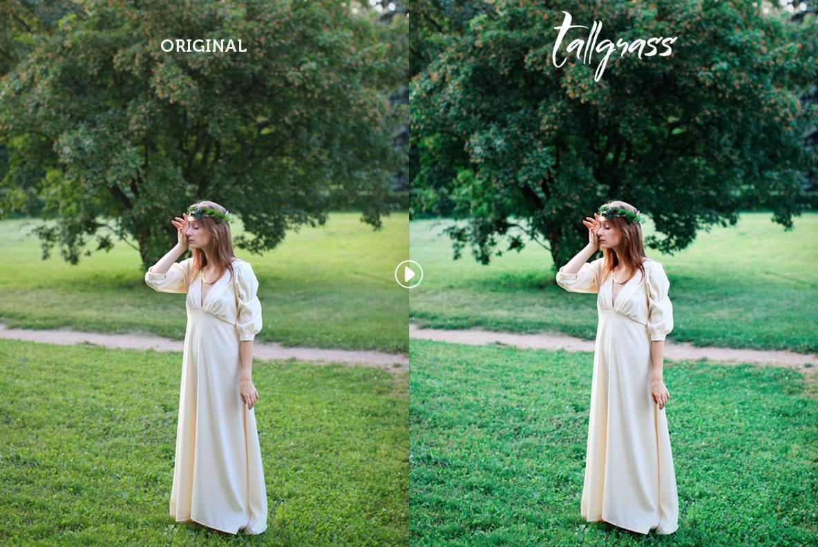 Tallgrass Photoshop Action