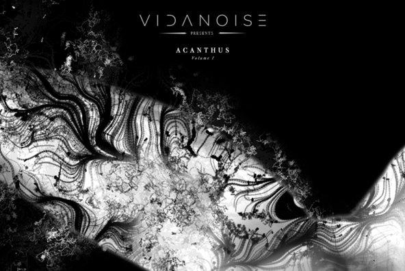 Acanthus   Vol I