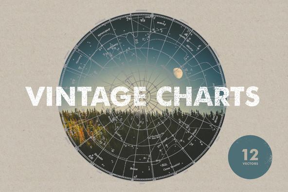 Vintage Charts   12 Vectors
