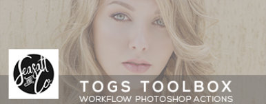 Togs Toolbox Action Collection
