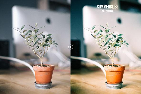 Summerbliss Lightroom Preset Pack