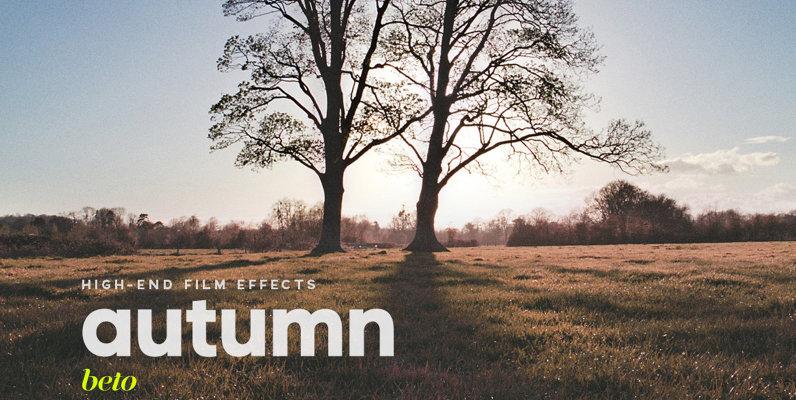 Autumm Action