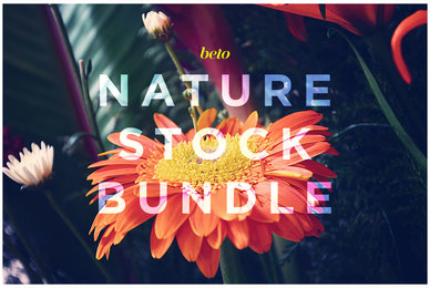 Nature Stock Bundle