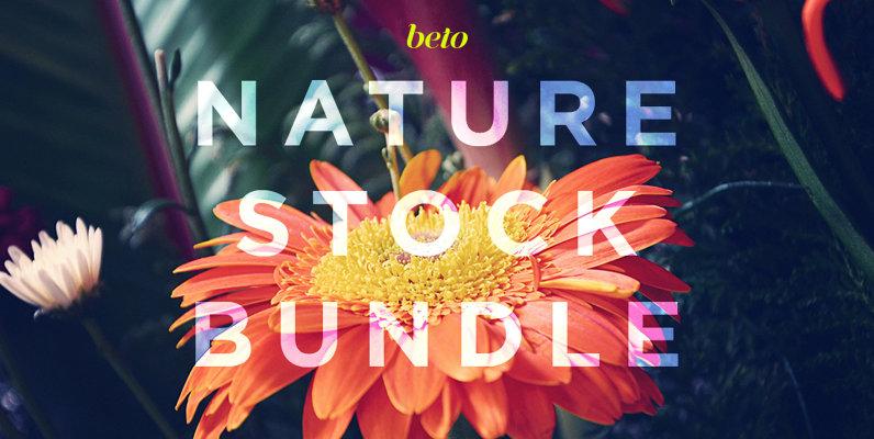 Nature Stock Bundle