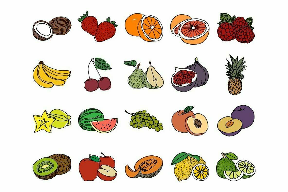 20 Hand Drawn Fruit Illustrations