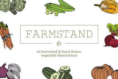 20 Handdrawn Vegetable Illustrations