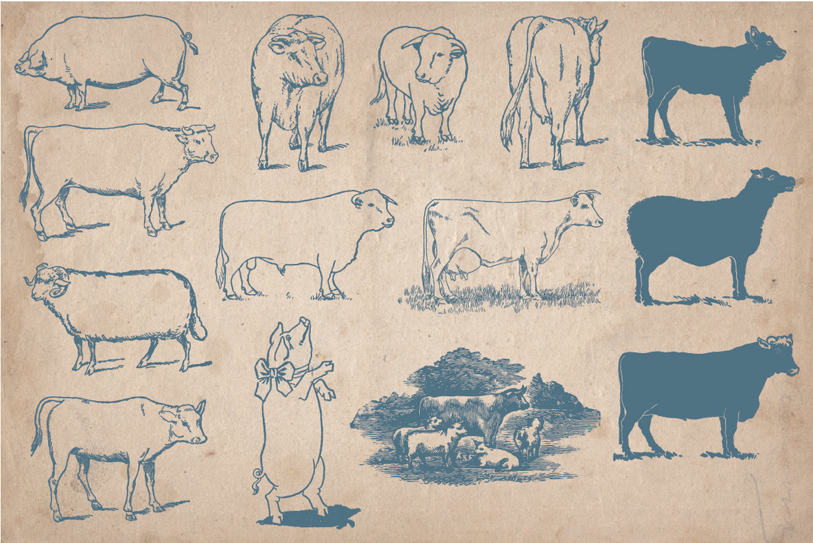 40 Vintage Farm Animals